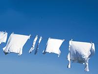 Onze vernieuwde VMS wast nu nóg witter! Alle verbeteringen en vernieuwingen op een rij