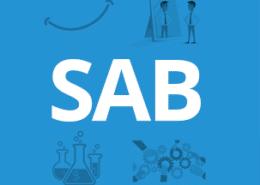 Een SAB meeting van Nétive