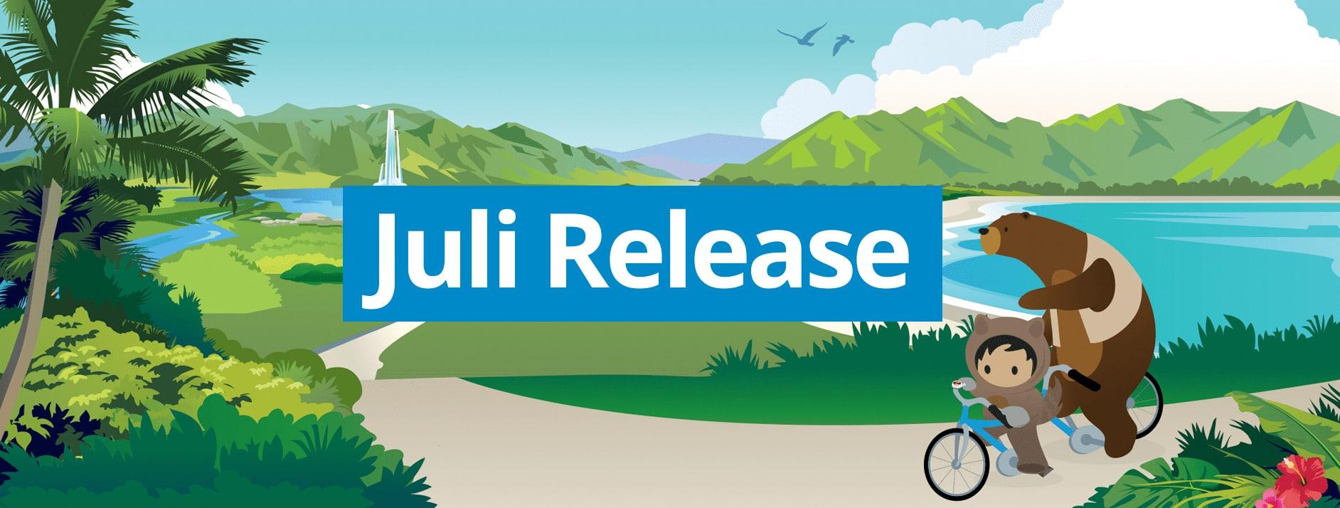 Release Nétive VMS juli 2020